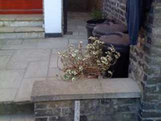 After re-laying existing slabs and pointing in to the original slabs all areas were made good, and left clean and tidy as per pictures